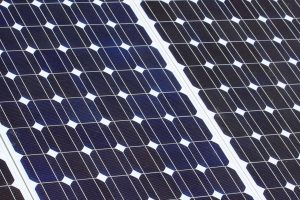 Close up of Trina solar panels